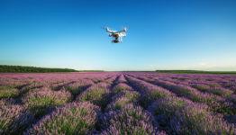 Varna, Bulgaria - June 22, 2015,: Flying drone quadcopter Dji Phantom 2 with digital camera GoPro HERO4,  over beautiful lavender field in Provence